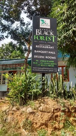 black forest resort munnar review