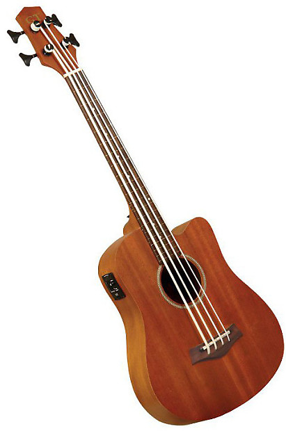 gold tone microbass 25 review