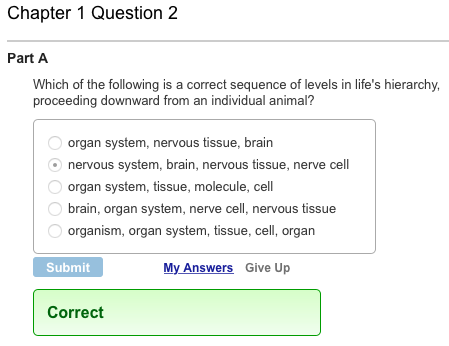 chapter 8 review biology answers