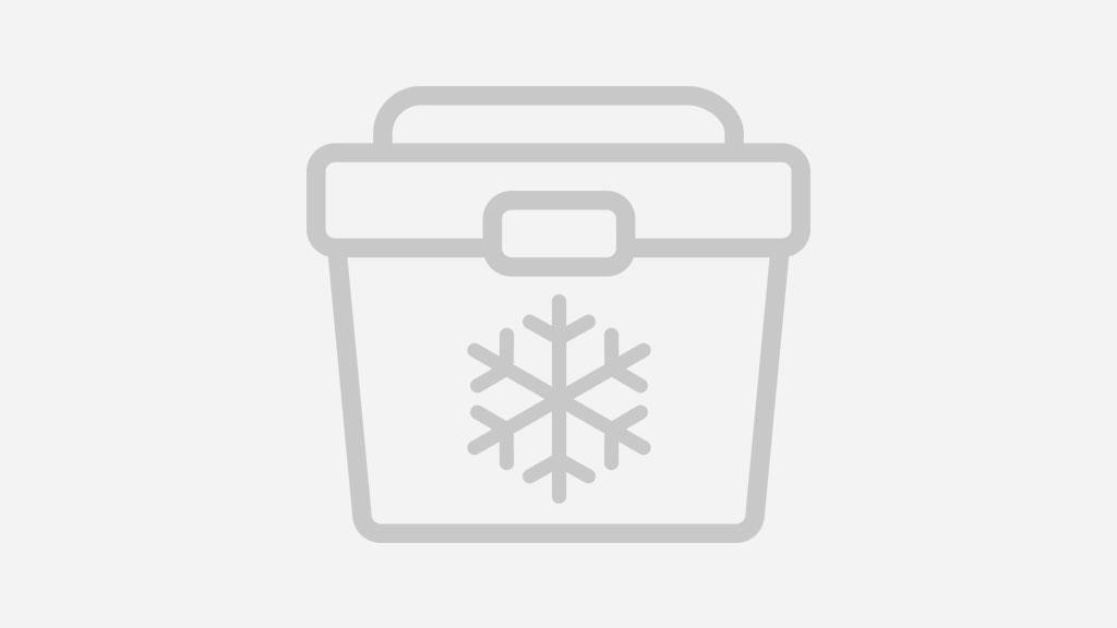 esky 70l arctic pro cooler review