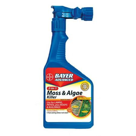 bayer moss and algae killer reviews